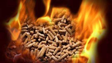 Avec le changement de majorité, le projet de centrale biomasse a été revu.