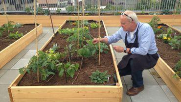 Patrick, cuisinier-jardinier, fait pousser les légumes que les élèves mangeront