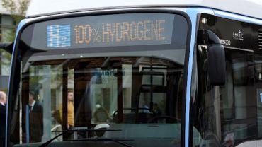 Manque de financement: pas de bus à hydrogène dans l'immédiat à Charleroi