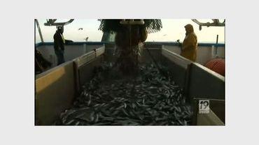 La pêche