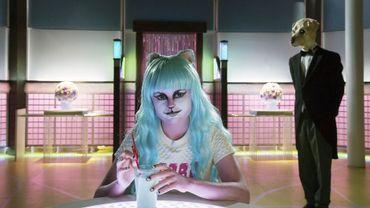 """""""Le Lapin Blanc"""" : le sombre terrier d'Internet"""