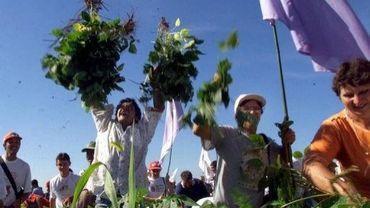 Manifestation du mouvement des Sans-Terre au Brésil contre le soja transgénique produit par Monsanto en janvier 2001