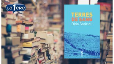 """""""Terres de sang"""" de Dido Sotiriou: un roman sur l'exode des Grecs d'Anatolie"""