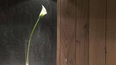 Cuisines, salles de bain: le bois a la cote dans nos intérieurs