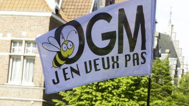 L'Euro pourra autoriser les OGM, mais les Etats  auront la possibilité de les interdire.