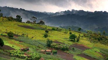 Le Kivu