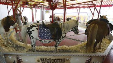 Des règles encore plus strictes à Bruxelles pour l'utilisation des poneys et chevaux pour le divertissement