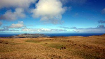 Un paysage de l'île de Pâques, le 11 août 2013 dans l'océan Pacifique