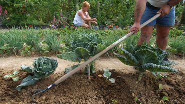 Cultiver son jardin même s'il est pollué, c'est possible