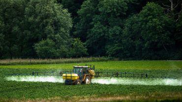 Cour de Justice de l'UE: la Région bruxelloise peut s'opposer à la Commission sur le glyphosate