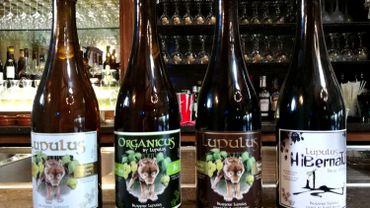 Pour rester dans la tradition, la convivialité et le partage, la brasserie Lupulus produit des bouteilles de 75cl. Pour répondre à la demande du marché, certaines bières de la gamme sont commercialisées en 33cl.