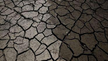 La sécheresse a atteint des records en Californie.