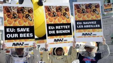"""Une manifestation devant les institutions européennes la veille de la décision du """"comité d'experts"""" n'aura pas permis d'emporter une décision favorable aux abeilles et aux apiculteurs"""