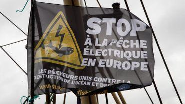 Le Parlement européen approuve l'interdiction totale de la pêche électrique en 2021