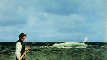 """Connaissez-vous la véritable histoire de """"Moby Dick"""" ?"""
