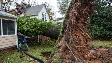 Les dégâts de l'ouragan Sandy à Washington.