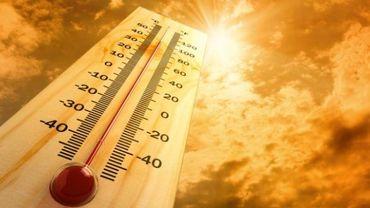 Météo de la plus belle journée de la semaine : 30°C à l'ombre