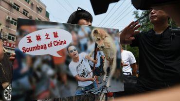 Action contre la dégustation de viande de chien à Yulin en 2016