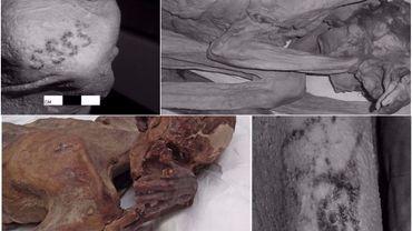 Des animaux à cornes et des formes de S découverts sur deux momies, mâle et femelle: les plus anciens tatouages figuratifs au monde?