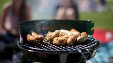La volaille, le poisson et les produits végétariens ont aussi la cote dans les barbecues