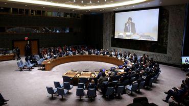 Tentative de coup d'Etat en Turquie: l'Egypte bloque le Conseil de sécurité de l'ONU