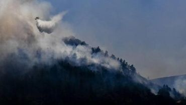 Les feux de forêt reprennent de plus belle au Portugal