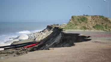La Flandre et le Nord de la France s'unissent pour protéger leurs dunes