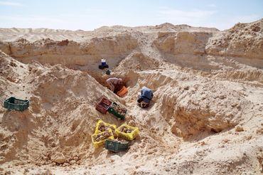 L'émission Quel Temps vous emmène au Sud de la Tunisie cette semaine