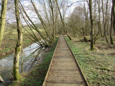 """Aux portes de Ciney, le """" Pâchis des chevaux """" est baigné par le Leignon, un ruisseau qui contribue à la qualité de zone humide de cette réserve naturelle"""