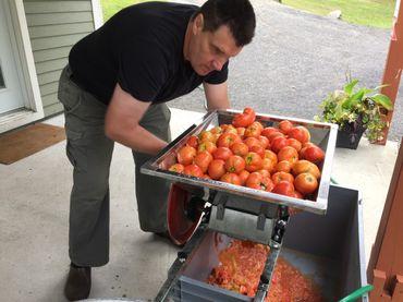 Les tomates sont ensuite broyées à la main avant d'être congelées afin d'augmenter leur concentration en sucre.