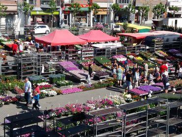 Marché aux fleurs en mai