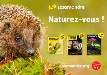 La nature racontée : Tout savoir sur les plumes avec La Salamandre !