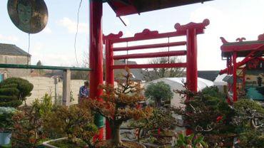 Le jardin aux 300 bonsaïs de Francis Kessel