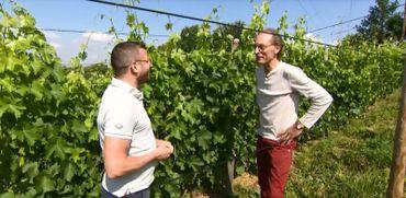 Jean Galler, le chocolatier viticulteur !