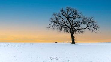 Magnifique paysage immaculé, à Incourt (Brabant wallon)