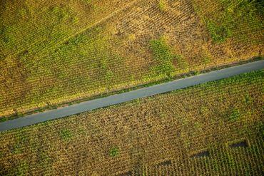 """Sécheresse : """"Les agriculteurs sont inquiets pour leurs cultures"""""""