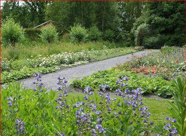 Ces jardins expérimentaux : une mine d'idées pratiques pour des aménagements sur de petites surfaces