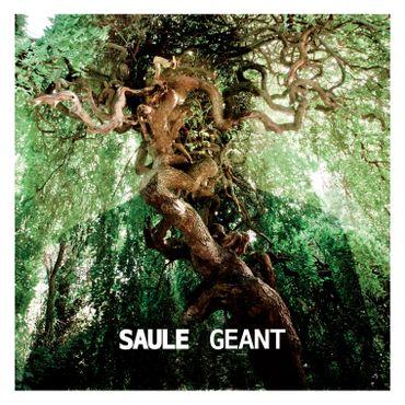 """Saule - """"Géant"""""""