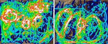 La différence d'un regard à un autre sur une même oeuvre. Les zones aux couleurs les plus chaudes sont les plus pointées.