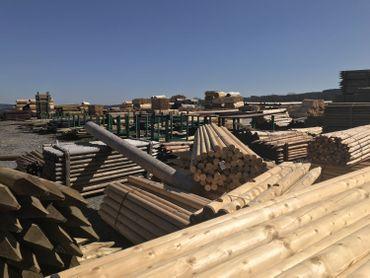 La filière bois wallonne s'appuie majoritairement sur l'épicéa