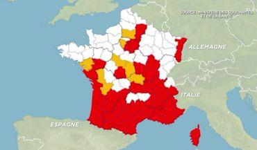 Démoustication en Camargue: ou comment gérer les moustiques
