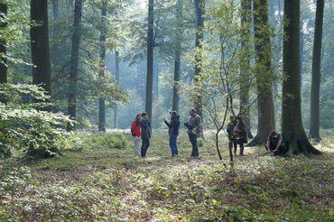 Tournage en forêt de Soignes
