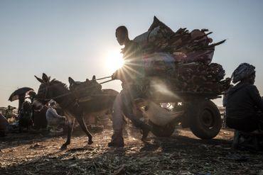 Un marchand vient vendre du bois avec son âne sur la marché d'Asosa, en Ethiopie, le 25 décembre 2019