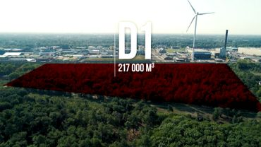 La décharge D1 se trouve à l'extérieur de l'enceinte de l'entreprise Umicore