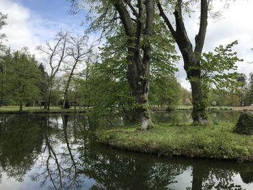 Nismes est un joli village de la commune de Viroinval qui vous surprendra par la richesse de son patrimoine naturel.