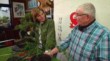 Francis Kesseest un passionné qui réalise des bonsaïssur base d'espèces orientales mais aussi à l'aide de d'arbres de chez nous !