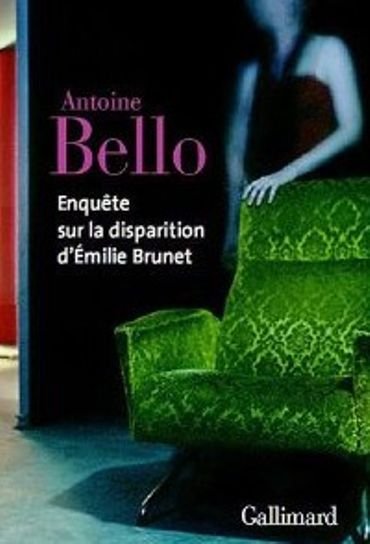 Enqueête sur la disparition d'Emilie Brunet
