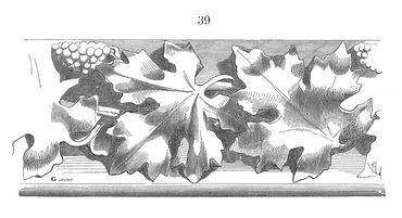 Pape de l'ampélographie, il a passé une vie à recenser 10.000 cépages