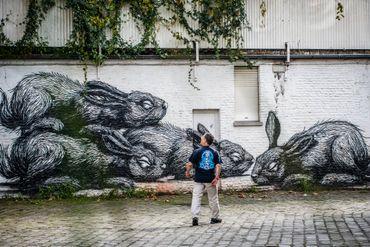 Tourisme en vélo ou en bâteau sans permis à Gand