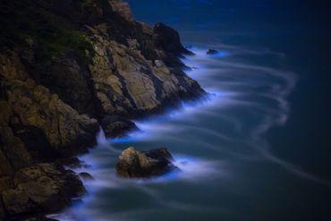 Noctiluca Scintillans sur une côte de l'île de Taiwan